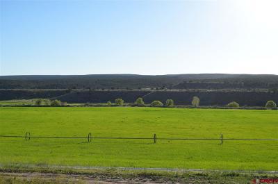 La Plata County Farm For Sale: 1705 State Hwy 140