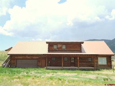 Creede Single Family Home For Sale: 406 McCall Drive