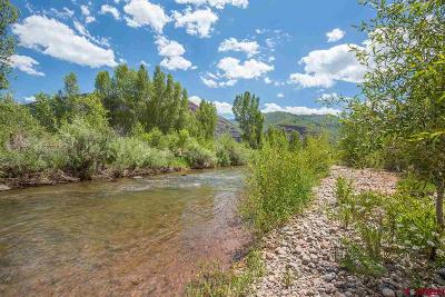 Durango Single Family Home For Sale: 755 Animosa