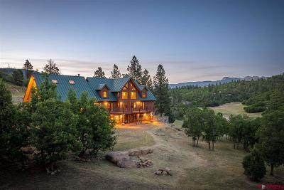 Mancos Single Family Home For Sale: 7015 Road 46