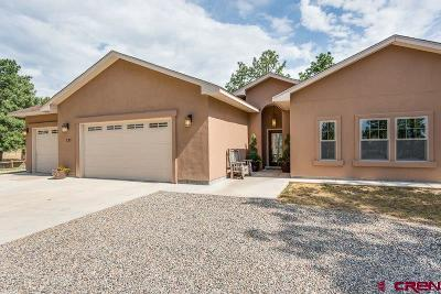 Durango Single Family Home For Sale: 137 Fantango