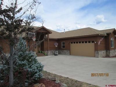 Pagosa Springs Single Family Home For Sale: 161 Blue Heron Circle