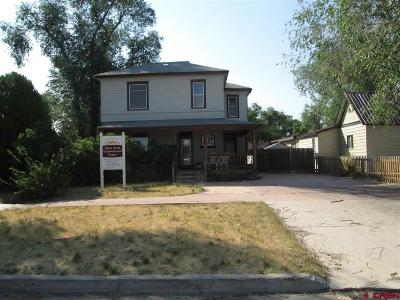 Montrose Single Family Home For Sale: 510 S 2nd