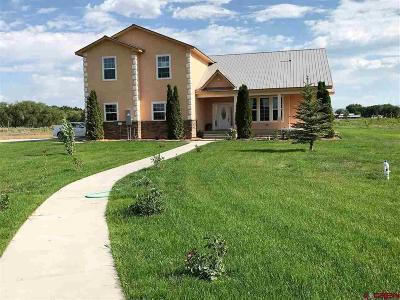 Olathe Single Family Home For Sale: 58198 Garner