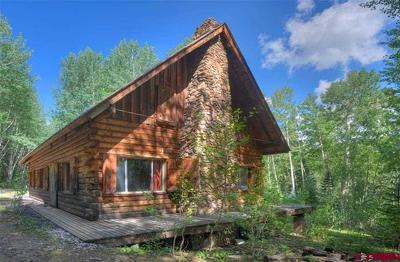 Mancos Single Family Home For Sale: 49578 Road L