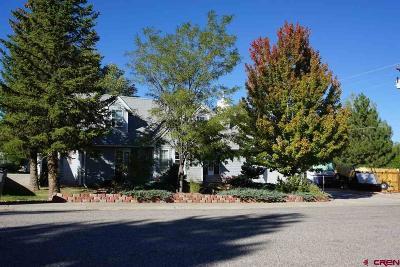 Cortez Single Family Home For Sale: 2312 Pelota Drive