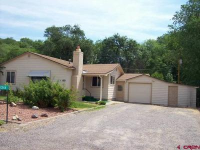Single Family Home For Sale: 13164 Orchard