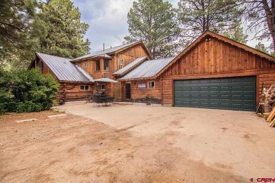 Pagosa Springs Single Family Home For Sale: 531 County Road 339 Road