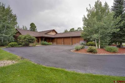 La Plata County Single Family Home For Sale: 746 N Dalton Ranch