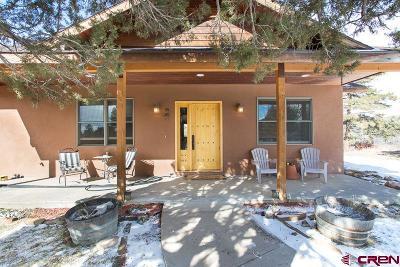 Durango Single Family Home For Sale: 171 Rim Dr