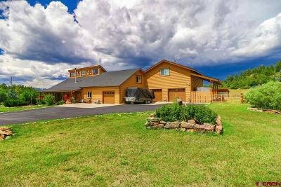 Pagosa Springs Single Family Home For Sale: 186 Spring