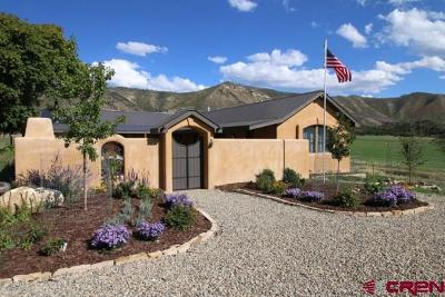 Mancos Single Family Home For Sale: 6982 Road 41