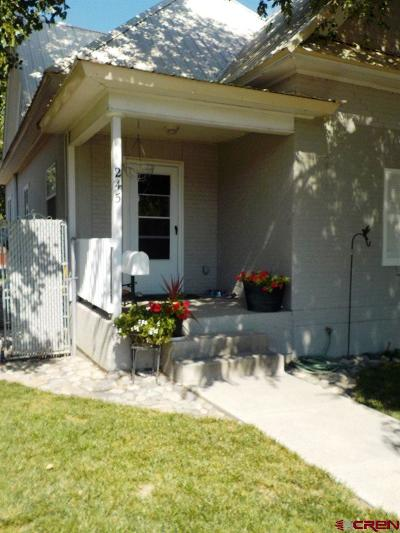 Delta Single Family Home For Sale: 245 Palmer