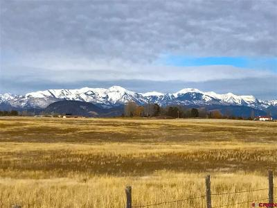 Durango Residential Lots & Land For Sale: Cr 302