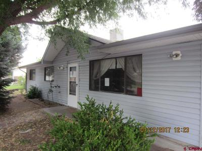 Montrose Single Family Home For Sale: 850 Mountain View