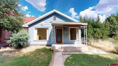 Durango Single Family Home For Sale: 342 7th Ave