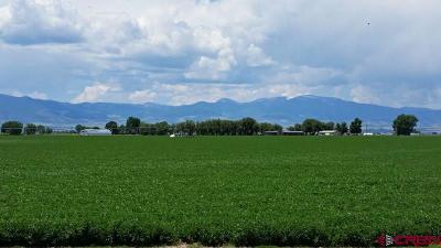 Monte Vista Farm For Sale: 5035 E County Road 2