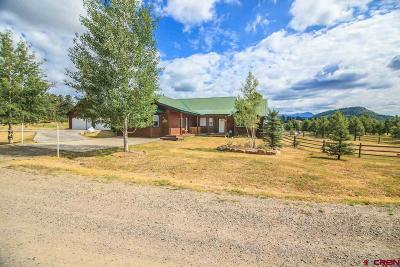 Pagosa Springs Single Family Home For Sale: 49 Sugarloaf