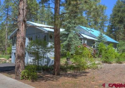 Durango Single Family Home For Sale: 181 Sortais