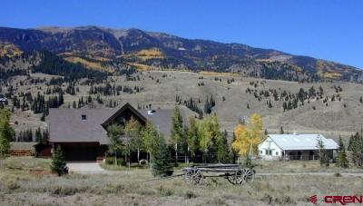Creede Single Family Home For Sale: 950 Middle Creek