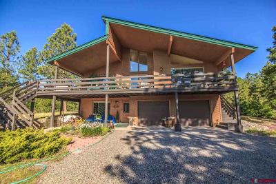Pagosa Springs Single Family Home For Sale: 139 S Squaw Canyon