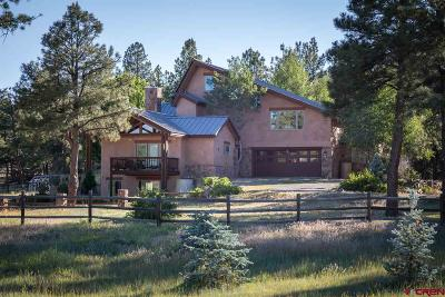 Pagosa Springs Single Family Home For Sale: 2415 Echo Canyon Ranch