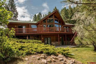 Pagosa Springs Single Family Home For Sale: 663 Saddleback
