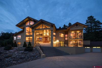 Durango Single Family Home UC/Contingent/Call LB: 40 Perins Vista Drive