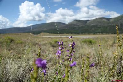 Creede Residential Lots & Land For Sale: Hwy 149