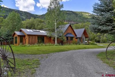 Ouray County Single Family Home For Sale: 353 County Road 23