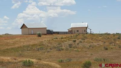 Single Family Home For Sale: 7262 County Line