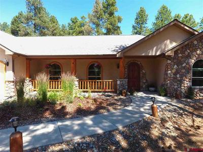 Durango Single Family Home For Sale: 998 Long Hollow