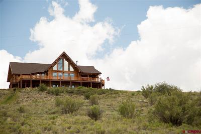Creede Single Family Home For Sale: 120 Wright