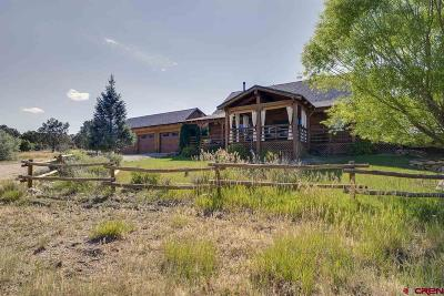 Durango CO Single Family Home For Sale: $712,500