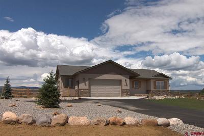 Durango Single Family Home For Sale: 163 Encantado
