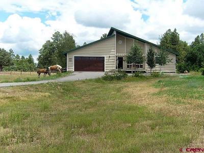 Pagosa Springs Single Family Home For Sale: 1018 S Pagosa