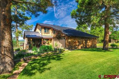 Pagosa Springs Single Family Home For Sale: 465 Handicap