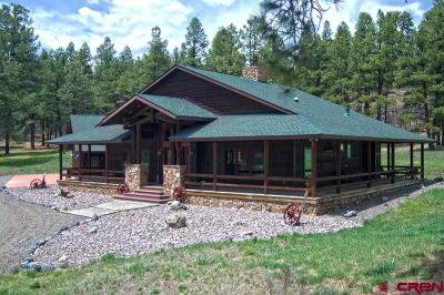 Pagosa Springs Single Family Home For Sale: 1640 County Road 326