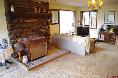 Ridgway Single Family Home For Sale: 486 Marys