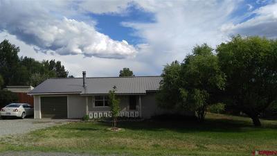 La Plata County Single Family Home For Sale: 808 Sage