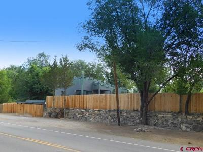 Delta County Single Family Home For Sale: 13442 Highway 65