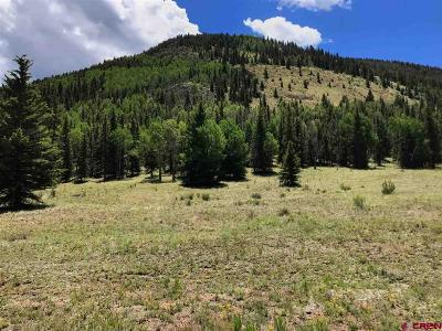 Creede Residential Lots & Land For Sale: 236 Macfarlane Drive
