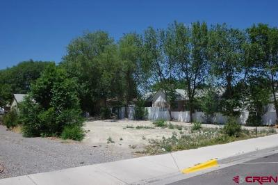 Delta Residential Lots & Land For Sale: 437 Palmer