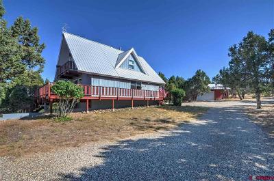 Dolores CO Single Family Home For Sale: $319,500