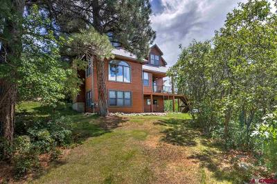 Durango Single Family Home For Sale: 419 Highland Hill Drive