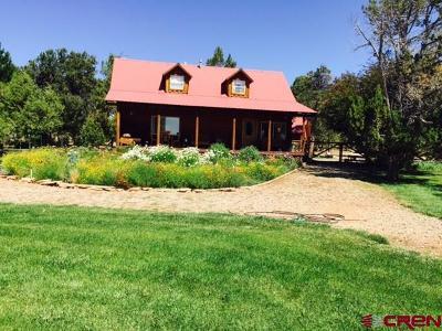 Single Family Home For Sale: 21330 Road V.6