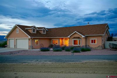 Delta CO Single Family Home For Sale: $415,000