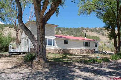 Crawford, Hotchkiss, Paonia Single Family Home For Sale: 38361 Highway 133