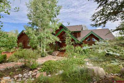 Mancos Single Family Home For Sale: 7960 Road 46