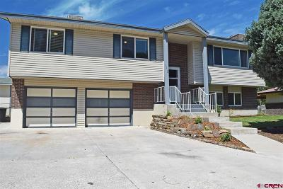 Montrose Single Family Home For Sale: 1512 Dover